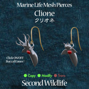 Second Wildlife - Marine Life Mesh Pierces 'CLIONE'  - 100% Dugong Janus